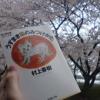 満開の桜の下で読む村上春樹