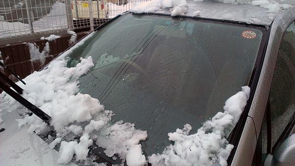 我が家の大雪の被害レポート
