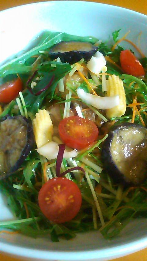 八色の野菜どんぶり
