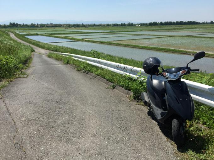 田んぼとスクーター