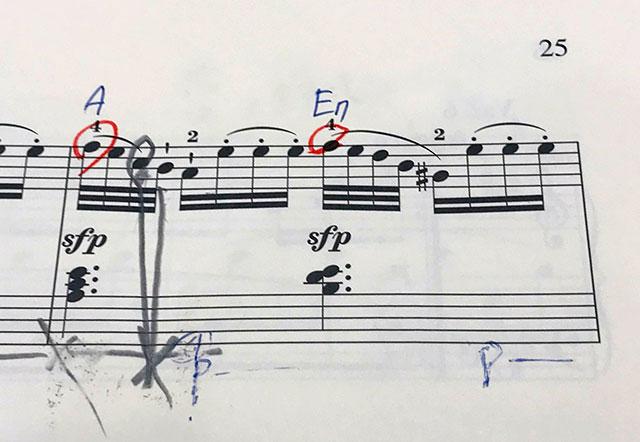 モーツァルト ピアノソナタ K.331 第1楽章 第5変奏
