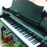 昔のピアノの先生宅