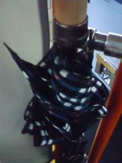 傘が折れた