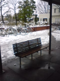 大雪のバス停